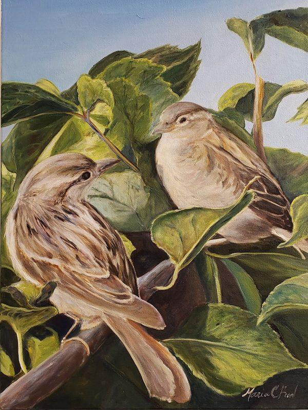 Birds-in-Ogunquit-20x16-AFP
