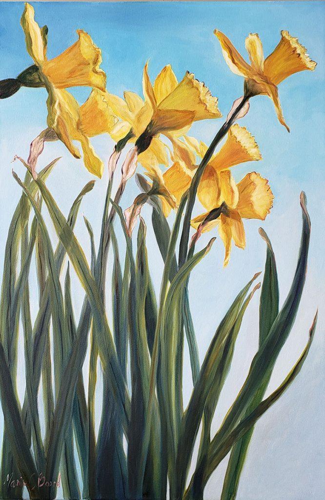 Daffodils-in-Spring-IPC