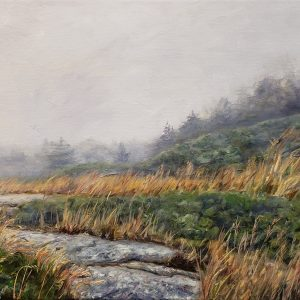 Fog on a Rocky Trail - Acadia 15x30 AFP